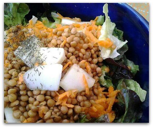 Probiotics Benefits - Prebiotic Lentil Salad