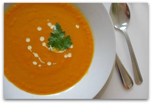 Diarrhea Remedy - Bowl of Carrot Soup